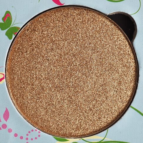 BRONZED LEAF MAKEUP ADDICTION MEADOW