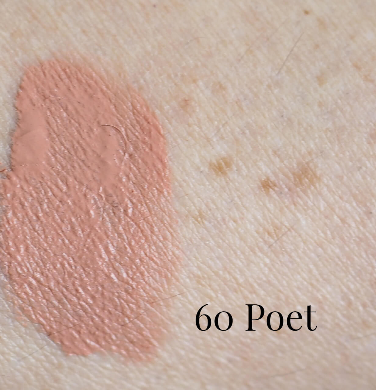 60 Poet Super Stay Matte Ink