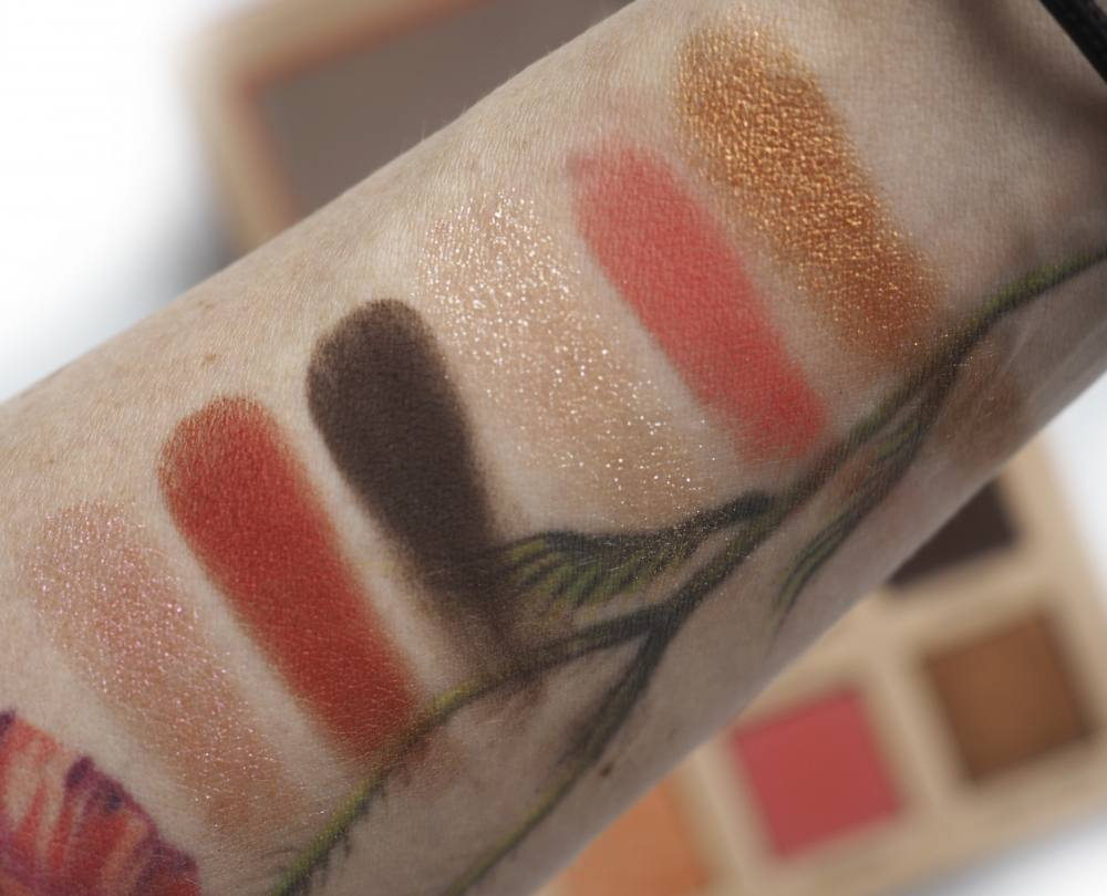 Swatches Nabla Coral