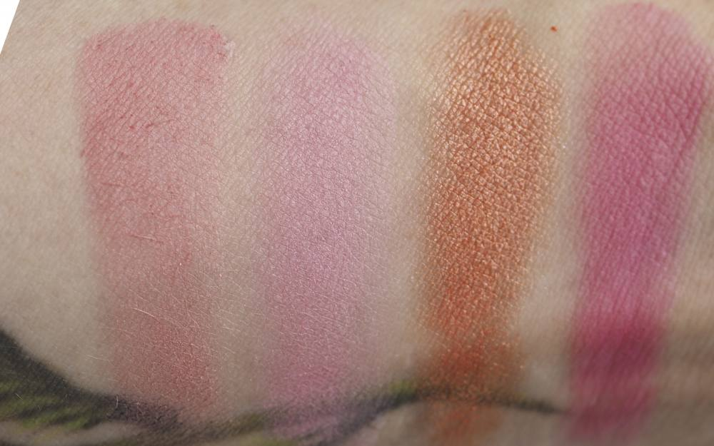 Swatches Pur Blush Book